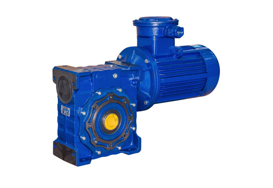 RV Series Worm Gear Reducer with Motor